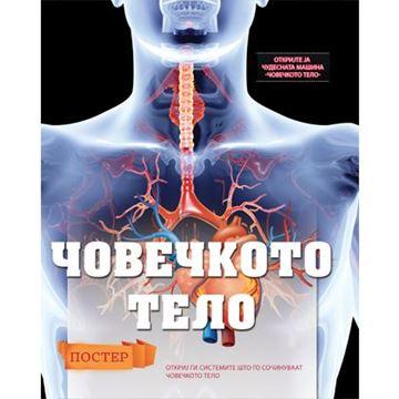 Слика на Човечкото тело