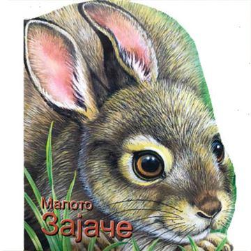 Слика на Малото зајаче